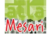 Atta Mesari Villa
